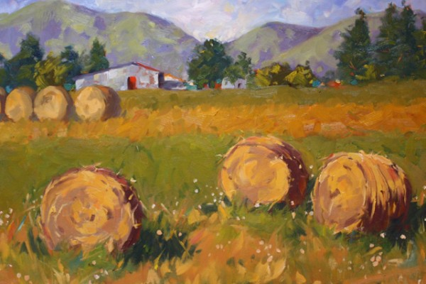S.Alessio hay bales -- Oil